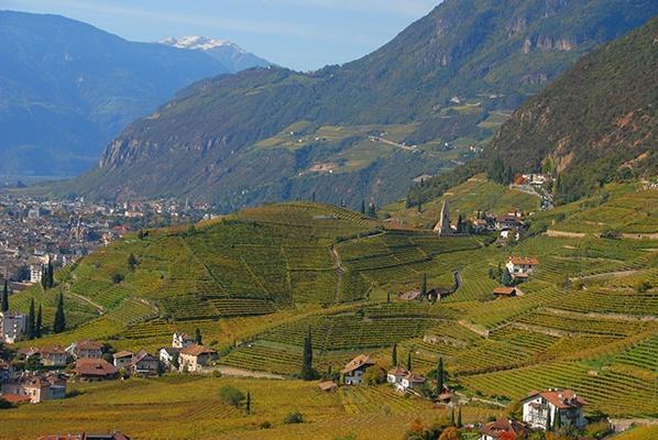 Das Weingut Alois Lageder in Südtirol
