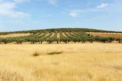 La Mancha, Spanien
