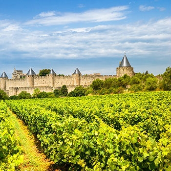 Carcassonne in Languedoc