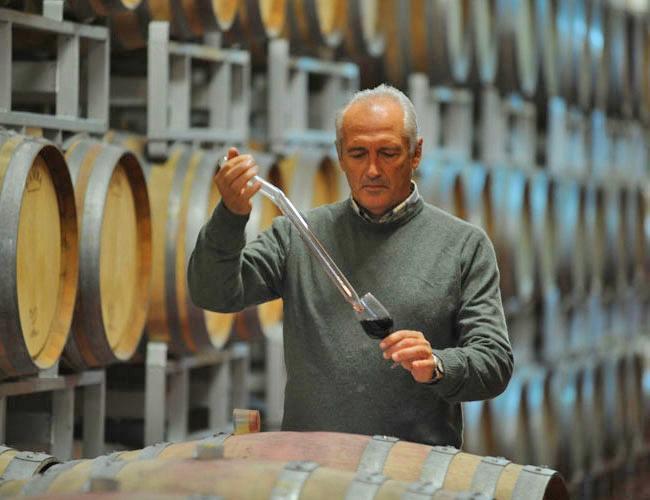 Im Weinkeller von Saladini Pilastri