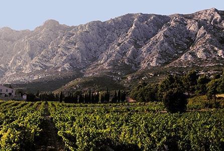 Weinregion Provence